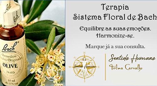 Terapia Sistema Flora Bach