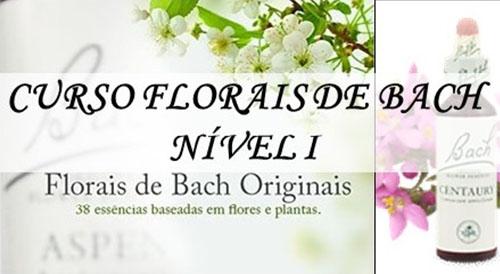 Curso de Florais de Bach - Nível I e II